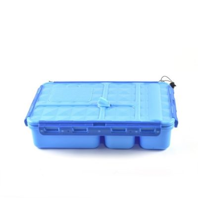 blue go green snack box